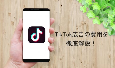 cost-of-tiktokad-explanation-1