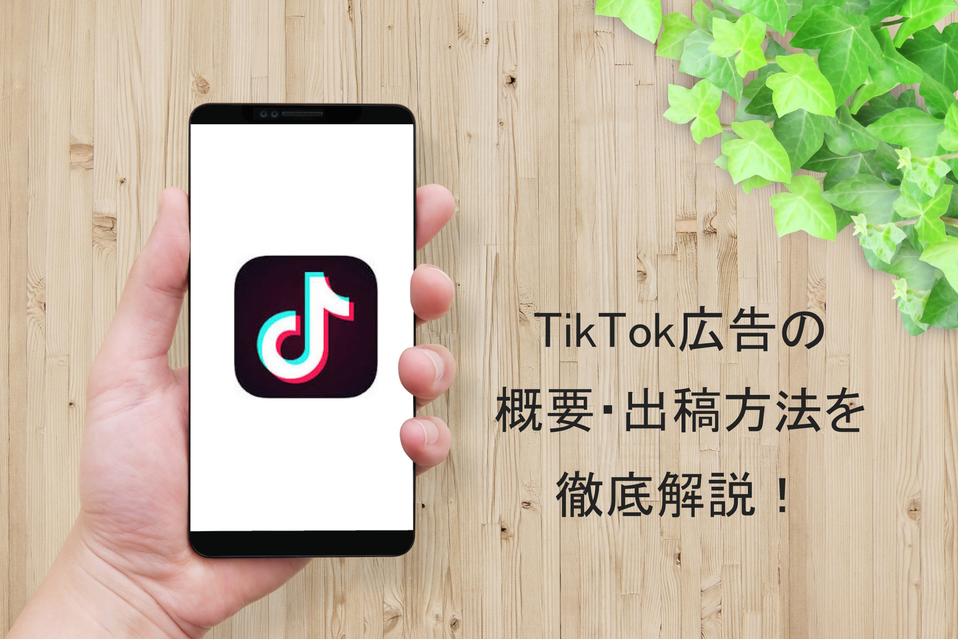 tiktokad-outline-explanation-1